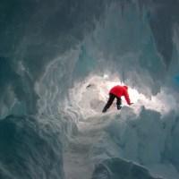 ¡Sorpresa: ADN en la Antártida!
