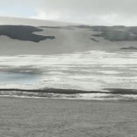 Bacterias polares muy útiles